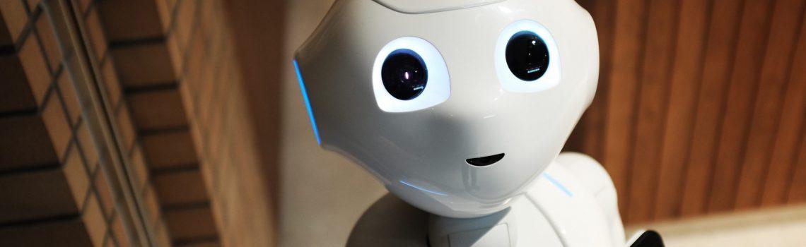 Foto-für-Der-Roboter-scaled-on4v7k7mshl1jjedkiwdnf8nklbbt05x42zhl82ht8